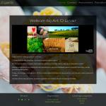 Website bouwen Art Qlinair
